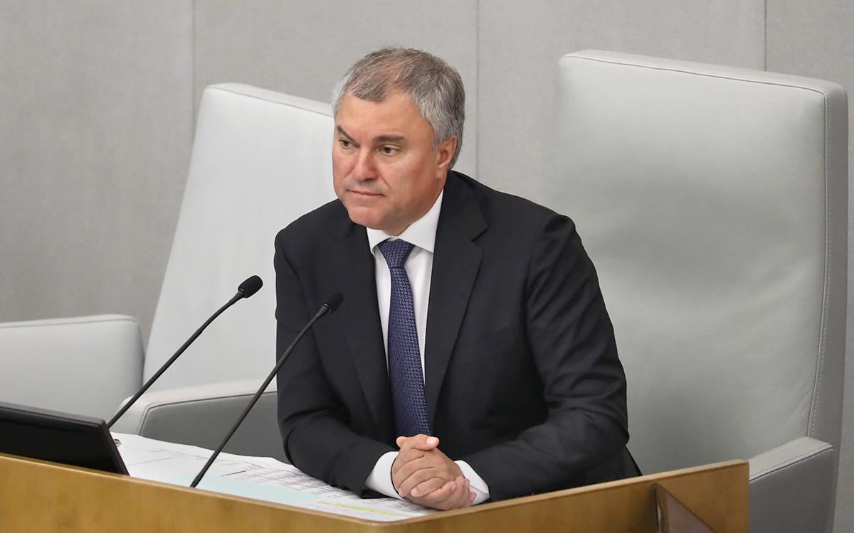Володин обвинил два ведомства в недоработке из-за свердоходов металлургов