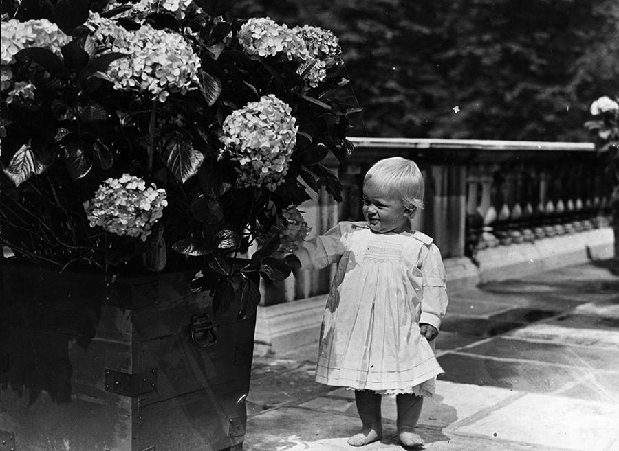 Букингемский дворец опубликовал список гостей на похоронах принца Филиппа