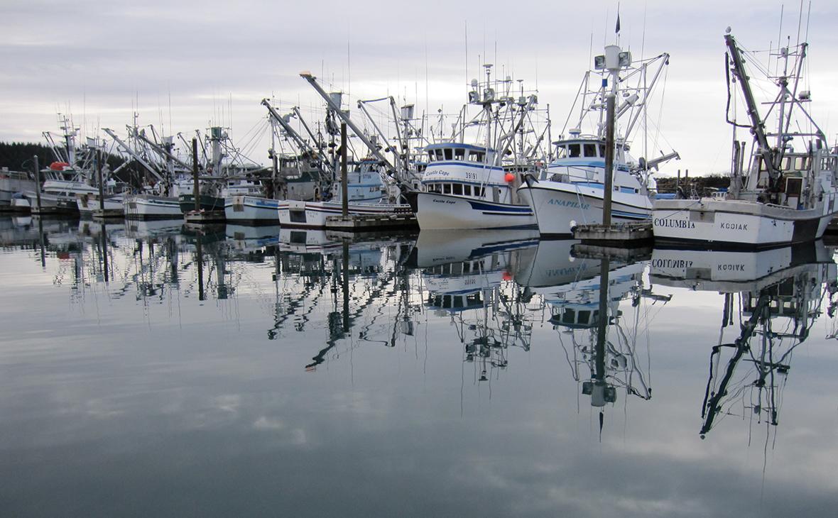 Сенаторы США призвали принять меры против поставок рыбы из России