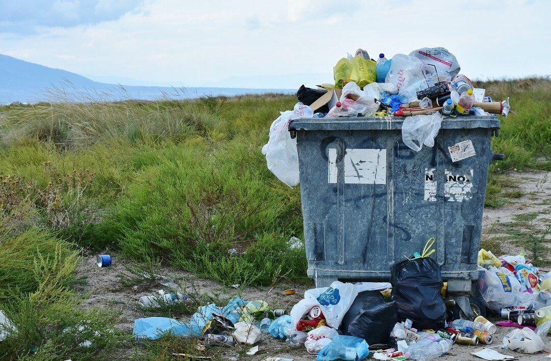 Свалка размером с Грецию. В России оценили масштабы непереработанного мусора