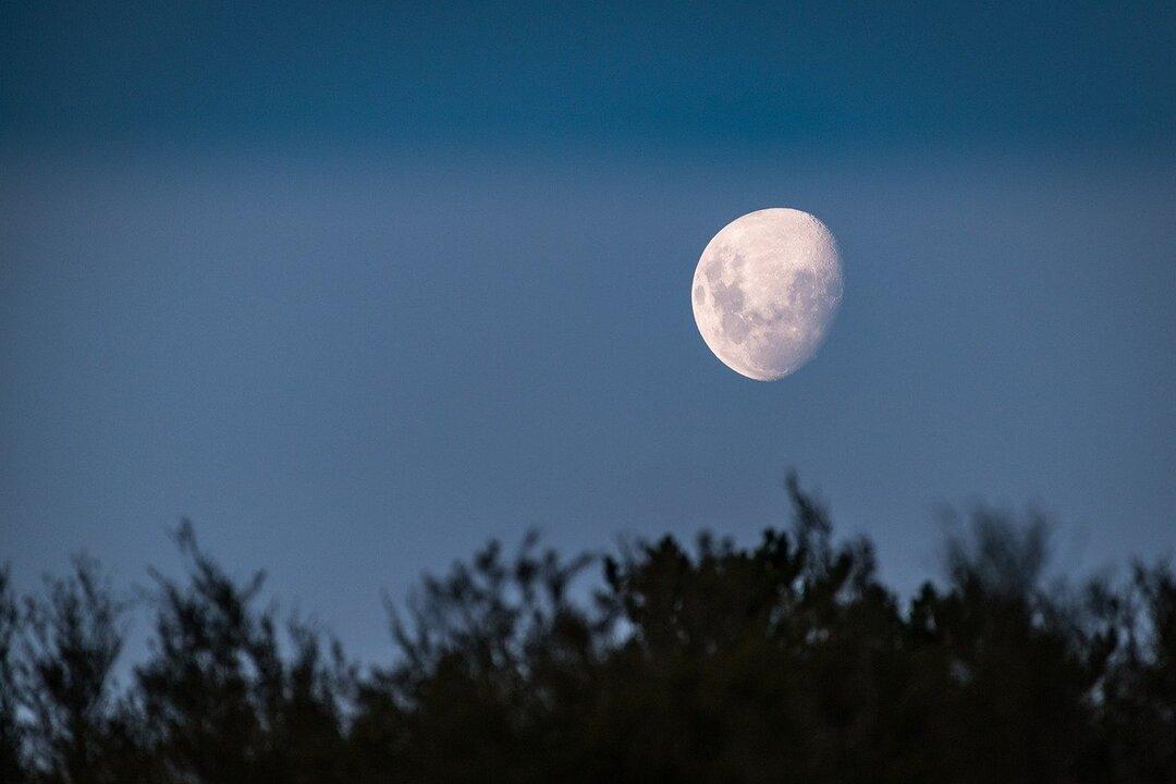 В Британии подсчитали стоимость ипотеки для строительства дома на Луне