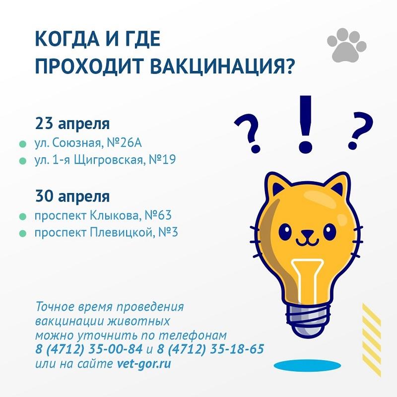 В Курске 23 и 30 апреля, 7, 14, 21 и 28 мая бесплатно вакцинируют домашних животных