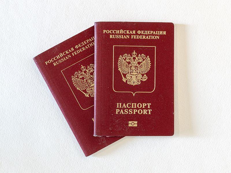 Милонов, Гозман, Арбатова и Вассерман ответили на вопрос об эмиграции из России