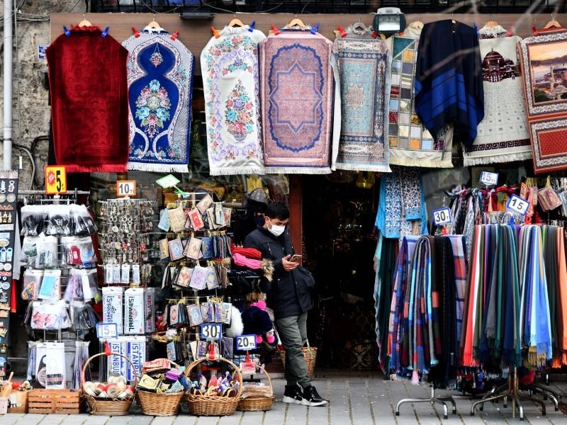 Голикова разъяснила, кто поможет туристам вернуться из закрытой Турции