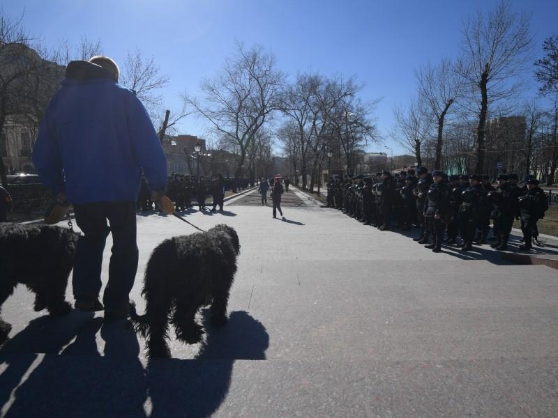 Прогулка с собакой, использование клаксона и другие митинги. Новости к утру 27 марта