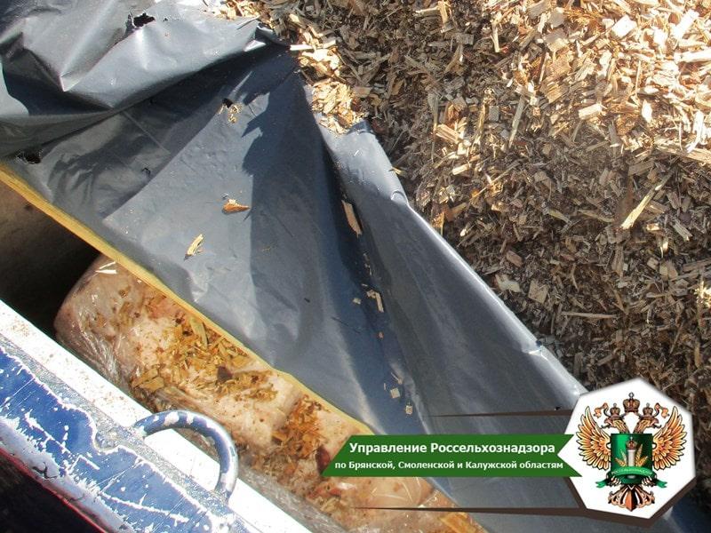 В Смоленской области пресекли поставку 16 тонн шпика из Беларуси