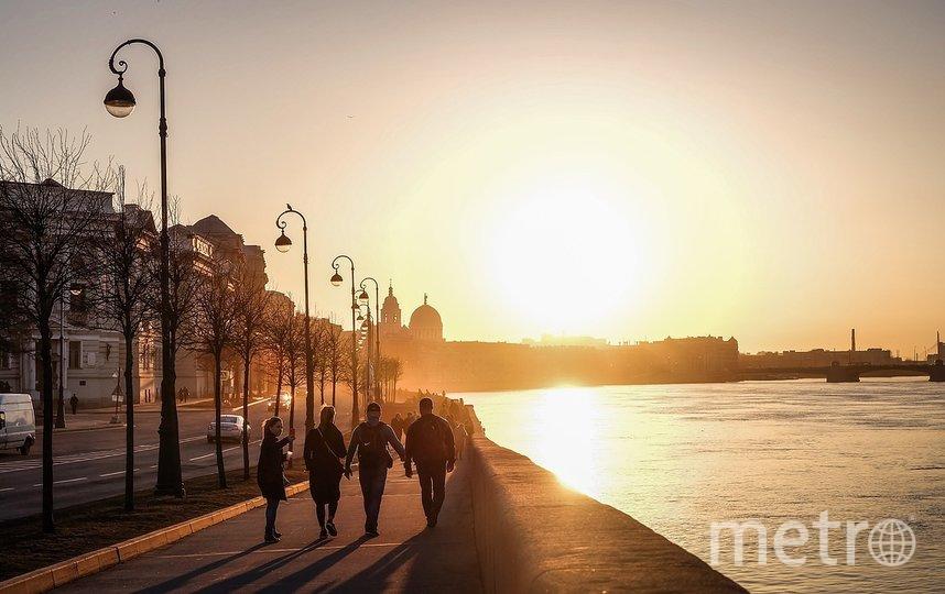 В Петербурге может появиться памятник всем жертвам COVID-19: чье это предложение