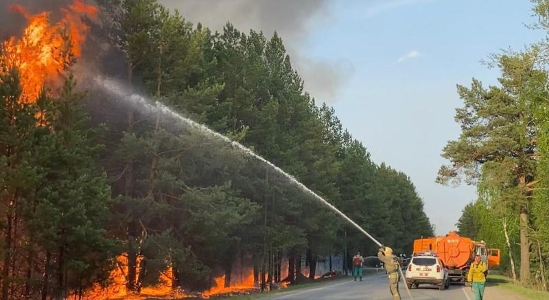 Под Тюменью ликвидировали крупнейший в регионе лесной пожар площадью 44 тысячи гектаров