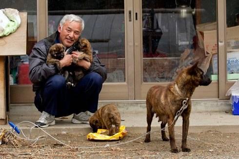 Фукусиму закрыли 10 лет назад после взрыва, и лишь двое жителей остались ради брошенных там животных