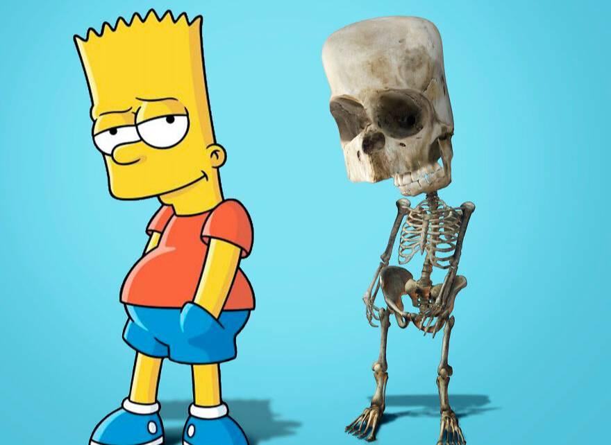 Давно хотели узнать, но боялись спросить: как выглядят скелеты самых странных мультяшных героев